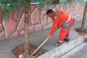 اجرای طرح پاکسازی «محله به محله» در منطقه هشت