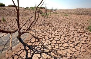 کم بارشی و کاهش شدید سطح سفره های زیرزمینی در البرز