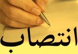 «مرتضی شریف کاظمی» سرپرست منطقه ۲ شد