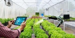 حوزه بهبود تولیدات گیاهی البرز به سامانه هوشمند کشاورزی مجهز شد