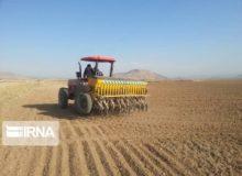 ١٨ هزار هکتار اراضی کشاورزی البرز زیر کشت پائیزه می رود